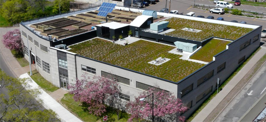 Duluth Motor Pool Green Roof